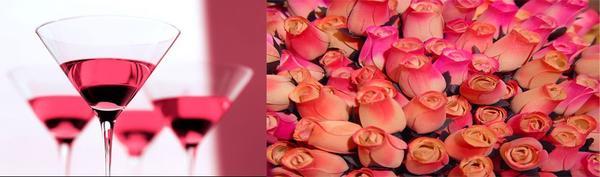 la rosa mas bella.... 786b72b1843132ffdc2da82537779392