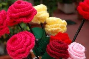 la rosa mas bella.... B817cd31ee6773a735f974b569103148
