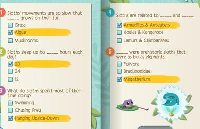 Image of: Pet Sloths Q The Book Is To Long And The Questions Are To Hard Can Have Help A Here Is Guide To Every Quiz That Will Help You To Get Your Trophies Playtube Animal Trophy Guide And Answers Animal Jam Central